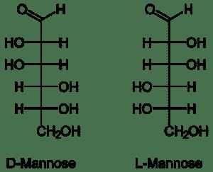 Structuur D-mannose blaasontsteking