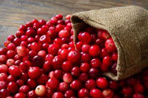 Cranberry-grote veenbes
