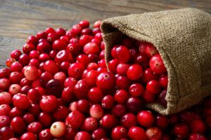 Cranberry-grote veenbes