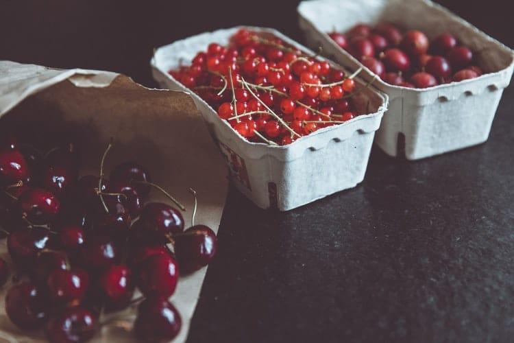 Cranberry in bakjes